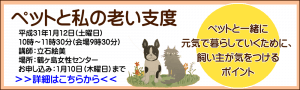 セミナー|ペットと私の老い支度|埼玉県鶴ヶ島市の「動物往診+在宅ケアサービス にくきゅう